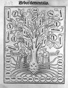 Arbor elementalis